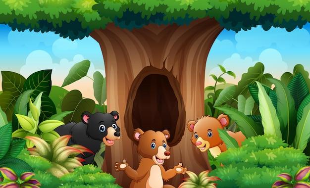 Ursos diferentes sob o fundo da árvore oca