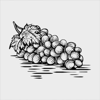 Uvas em ilustração vetorial de mão-extraídas de estilo gráfico