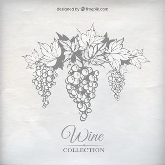 Uvas para vinho
