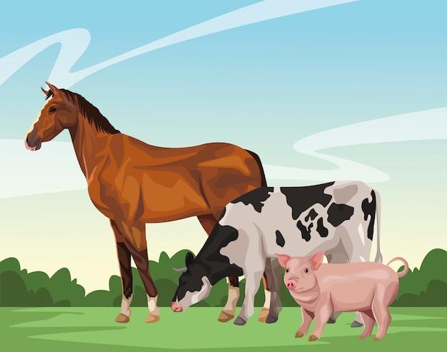 Vaca e porco de cavalo