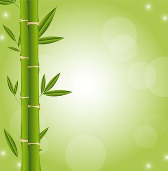 Varas de bambu com espaço para o vetor de cópia verde de fundo