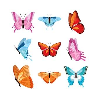 Várias borboletas em aquarela