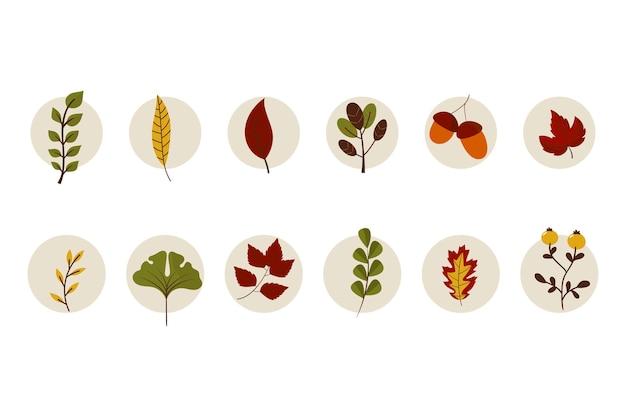 Várias coleções de folhagem de outono