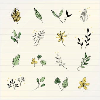 Várias folhas doodle vector coleção