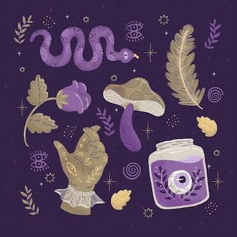 Várias plantas naturais e elementos esotéricos de cobra