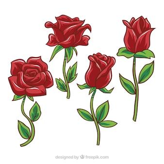 Várias rosas vermelhas com desenhos diferentes