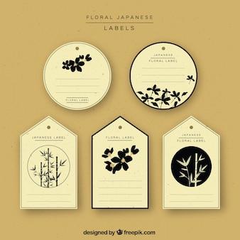 Variedade de adesivos japonês do vintage