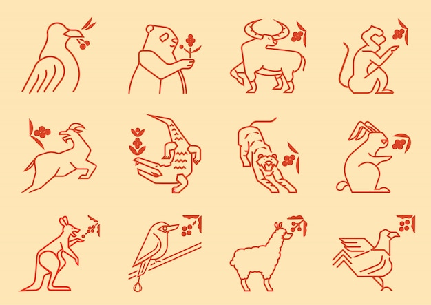 Variedade de animais comer frutas de café