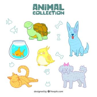 Variedade de animais desenhados a mão
