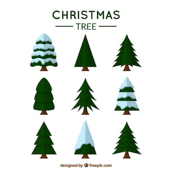 Variedade de árvores de natal