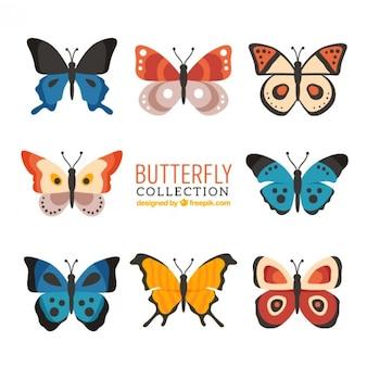 Variedade de borboletas ajustado em cores