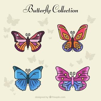 Variedade de borboletas bonitas