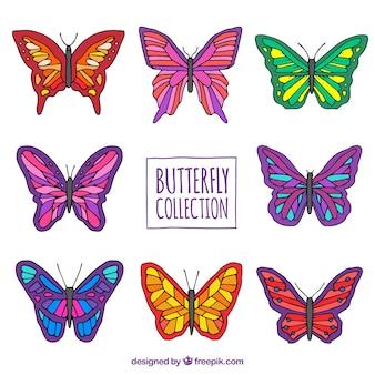 Variedade de borboletas coloridas no estilo desenhado mão