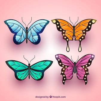 Variedade de borboletas coloridas