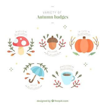 Variedade de crachás de outono planas