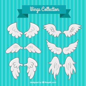 Variedade de fantásticas asas brancas