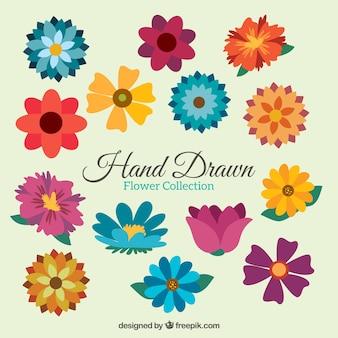 Variedade de flores coloridas em estilo plano