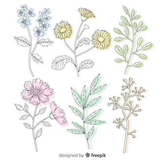 Variedade de flores tropicais e selvagens e coleção de folhas