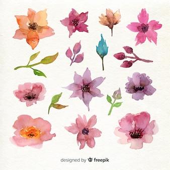 Variedade de flores violeta bonito vista superior
