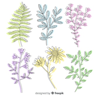 Variedade de folhas coloridas naturais e margaridas