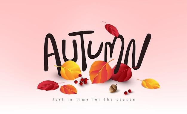 Variedade de folhas de outono caindo fundo de banner de outono e letras sazonais
