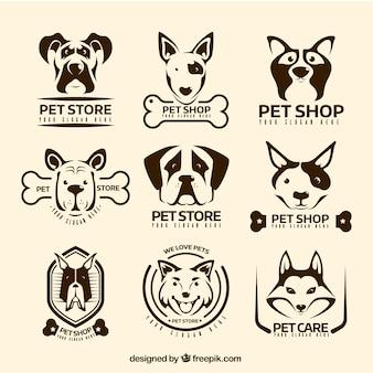 Variedade de logotipos do vintage com cães decorativos