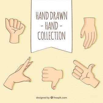 Variedade de mãos mostrando diferentes gestos