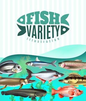 Variedade de peixes marinhos e fluviais debaixo d'água com ervas daninhas do mar em turquesa