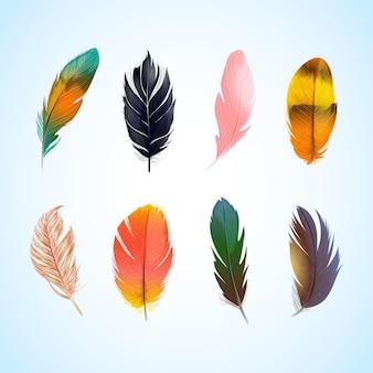 Variedade de penas coloridas