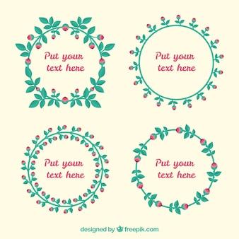 Variedade de rosas quadros em design plano