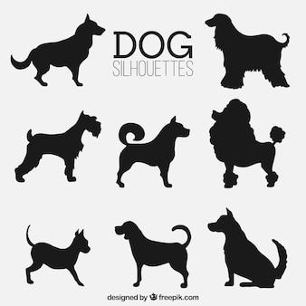 Variedade de silhuetas do cão fantásticas