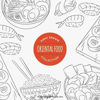 Variedade esboços de comida oriental