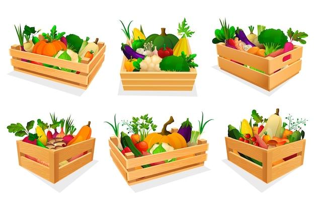 Variedade mista de vegetais em conjunto de caixas de madeira