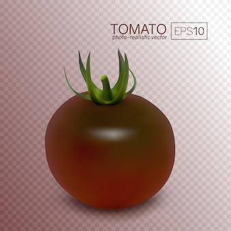 Variedades de kumato de tomate preto em transparente.