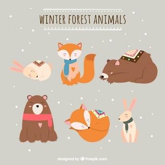 Vários animais da floresta na temporada de inverno