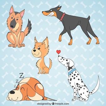 Vários cães desenhados à mão