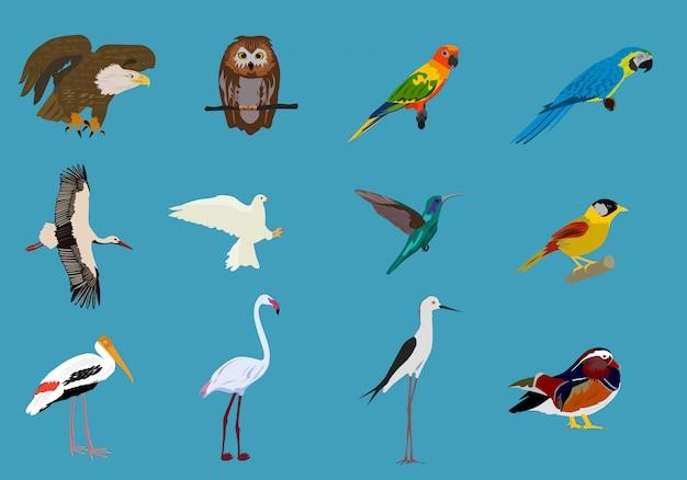 Vários conjuntos de pássaros fundo azul