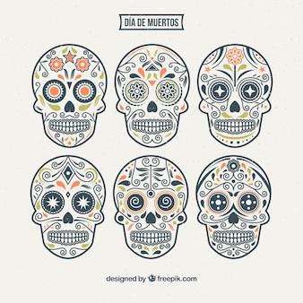 Vários crânios desenhados à mão ornamentais