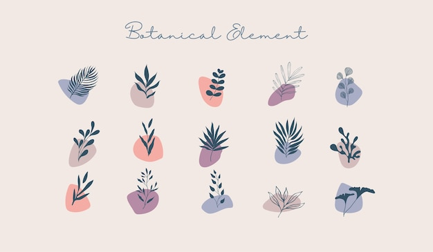 Vários elementos de formas botânicas