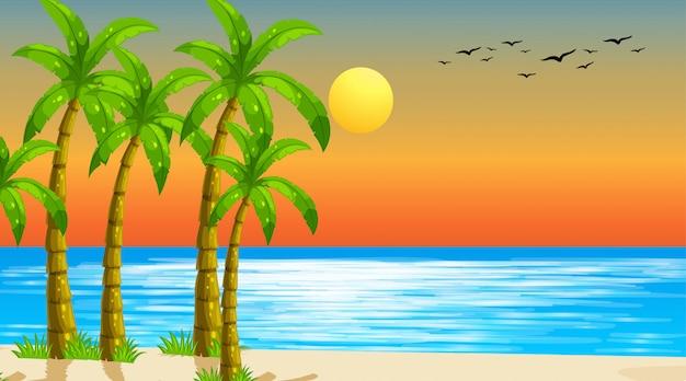 Vazio natureza praia oceano paisagem costeira