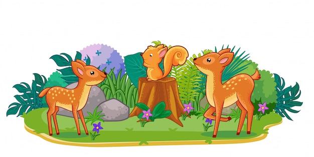 Veados estão jogando juntos no jardim