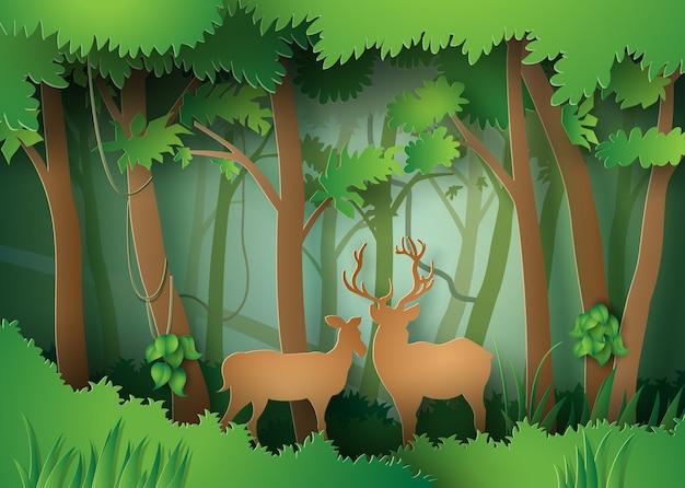 Veados na floresta.