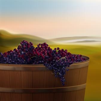 Vector barril de madeira de uvas vermelhas para vinho no vale isolado no fundo