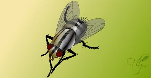 Vector bug voar livre