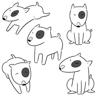 Vector conjunto de cão, bull terrier