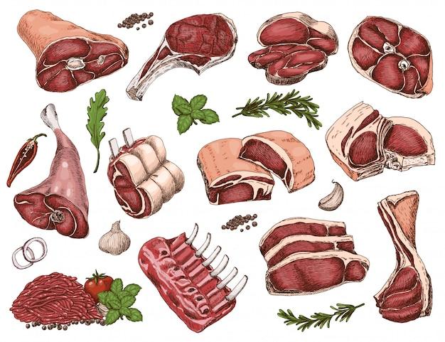 Vector conjunto de carnes de cor diferente