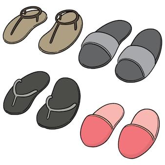 Vector conjunto de chinelos