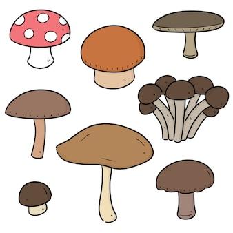 Vector conjunto de cogumelos