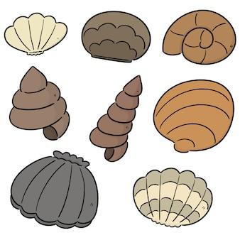 Vector conjunto de concha do mar