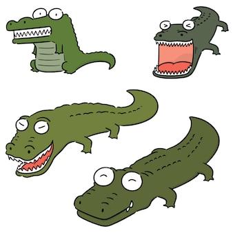 Vector conjunto de crocodilo